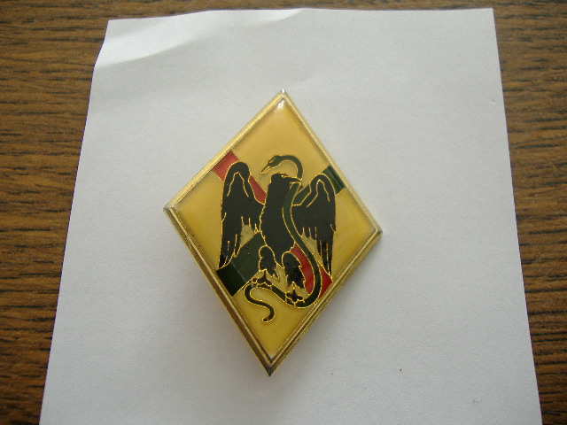 Ma Petite Collection d'Insignes LEGION 1_rei-11