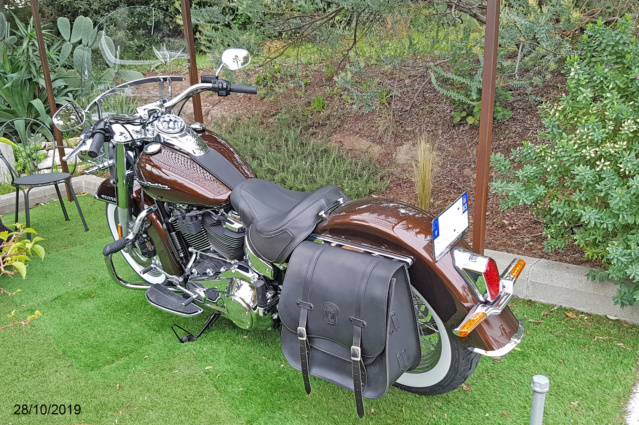 Softail DELUXE 2019_111