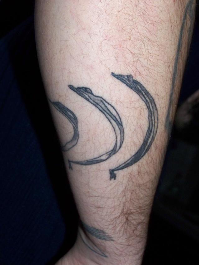 tatouage - Page 3 100_1513