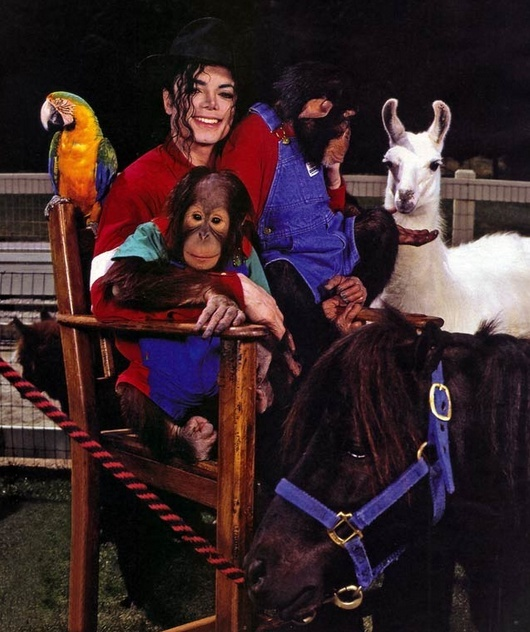 Neverland Valley Ranch - Pagina 4 Bnkjkb10