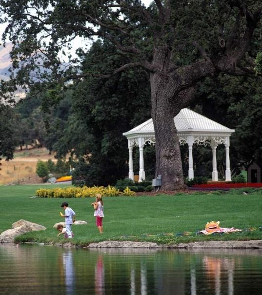 Neverland Valley Ranch - Pagina 3 Hkkdj10