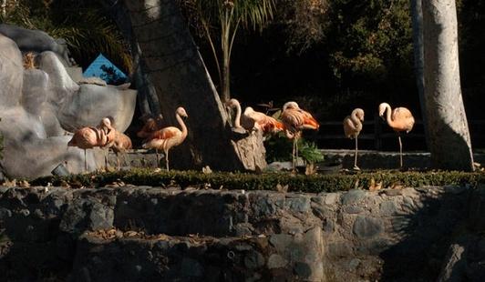 Neverland Valley Ranch - Pagina 4 Huihuh10