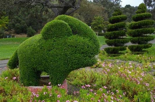 Neverland Valley Ranch - Pagina 2 Mjking10