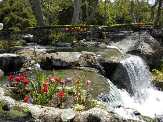 Neverland Valley Ranch - Pagina 3 Nmklkl10