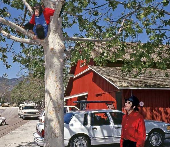 Neverland Valley Ranch - Pagina 4 Nnkjn10