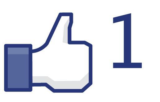 Candidature de Lekty Facebo10