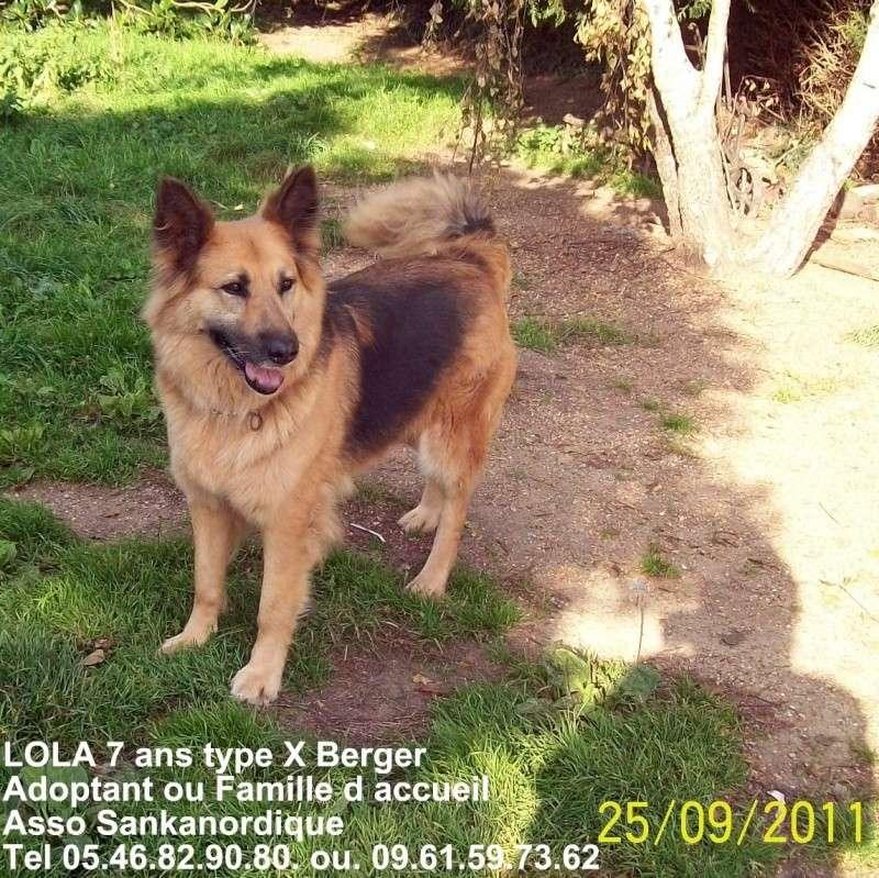 LOLA, type BA de 7 ans - A.BA.S.C (72) - Page 2 Lola1712