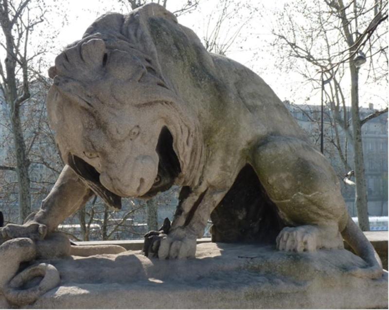 Le LION dans tous ses états 1_1_2494