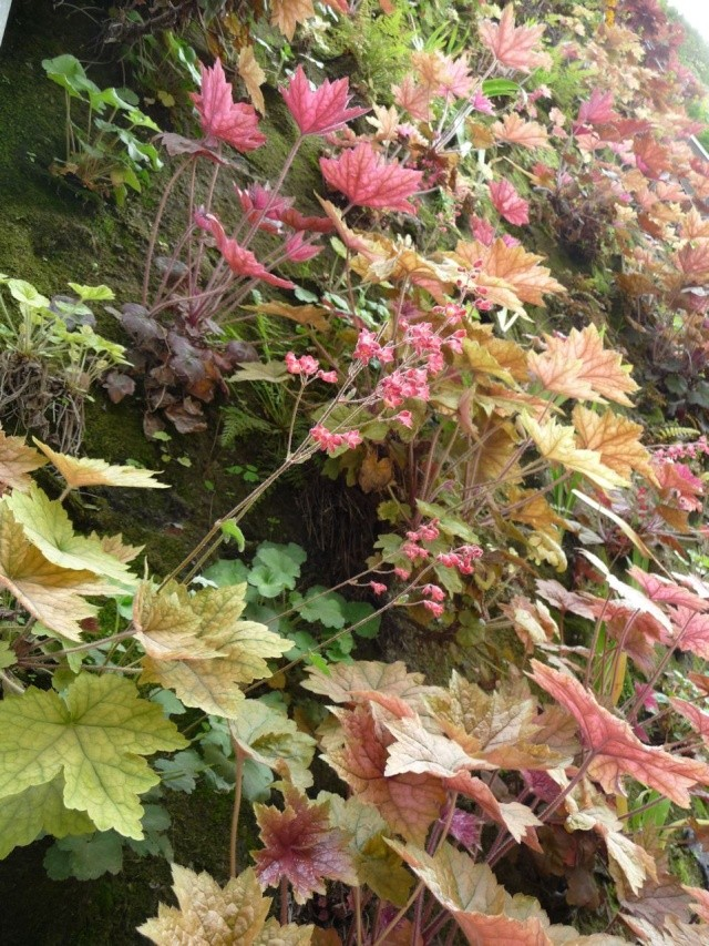 ART DU JARDIN jardins d'exception - fleurs d'exception 1_1_2852