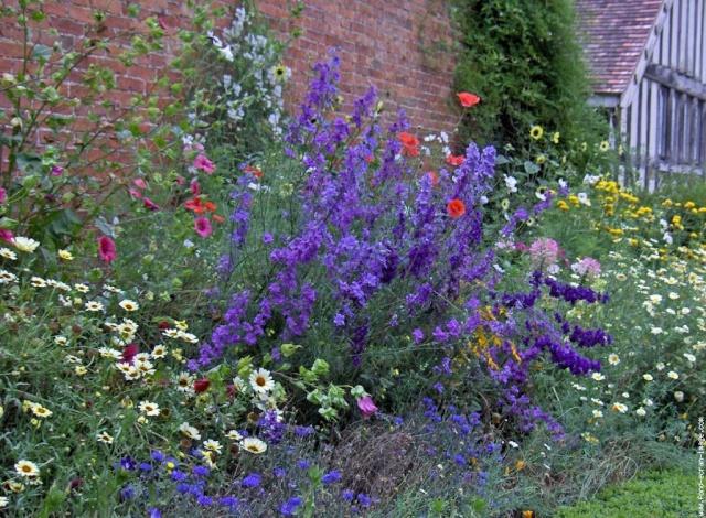 ART DU JARDIN jardins d'exception - fleurs d'exception 1_1_3090