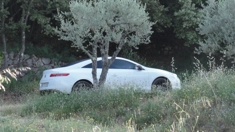 [moa22] Laguna III coupé Monaco GP - Page 2 Dsc00510
