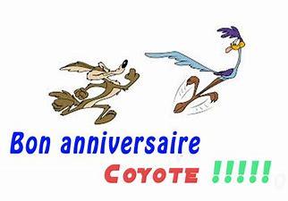 Anniversaire du coyote Annivb10