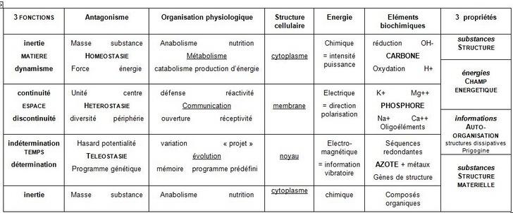 Les bases systémiques de la biologie et de la médecine Biochi10