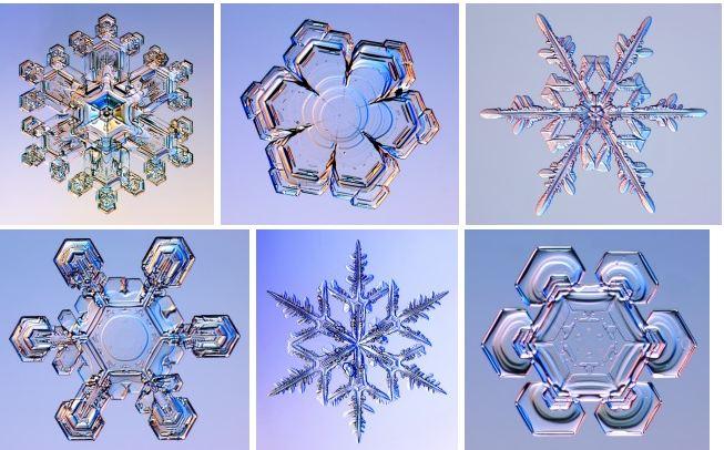 Approche globale ou holistique: systémique, fractale, hologramme, intrication quantique Flocon10