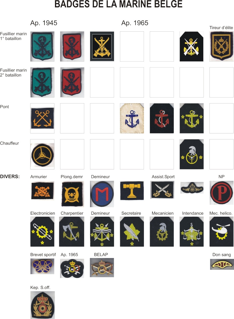 Identification insignes - Page 8 Badge10