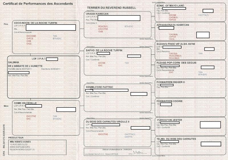 Nouveaux documents généalogiques! Lof_ga11