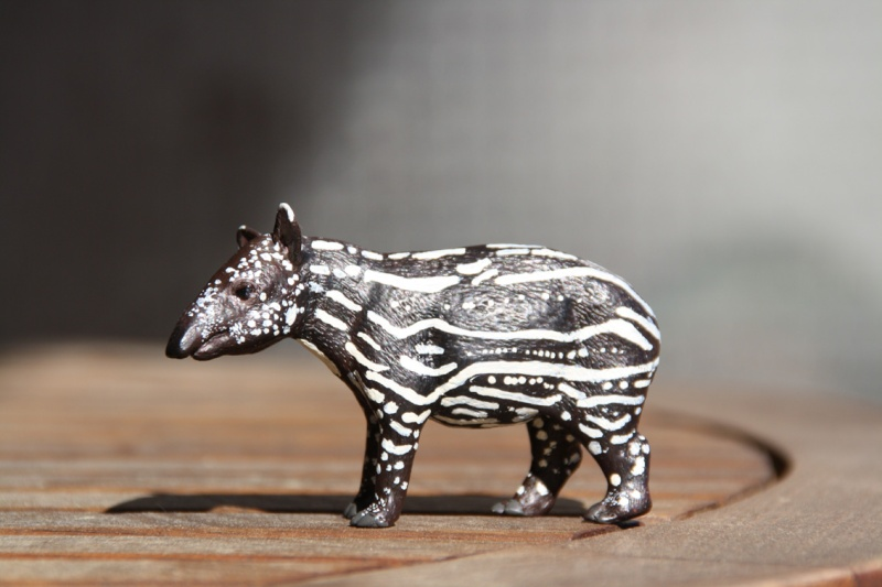 I received that wonderful tapir calf from Ana ... Imagen42