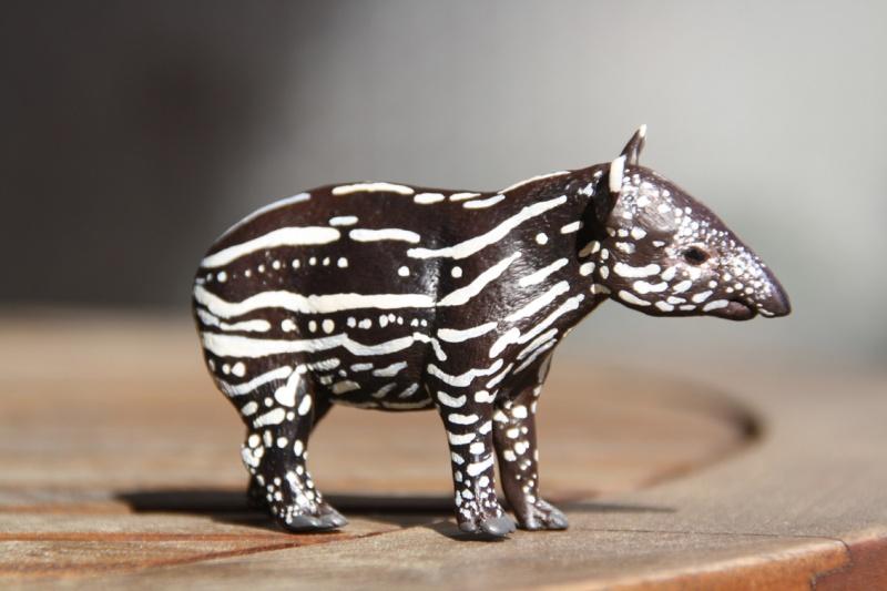 I received that wonderful tapir calf from Ana ... Imagen43