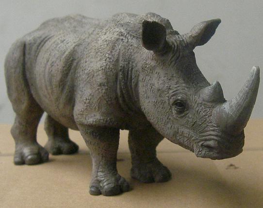 Presentatiohn: Mojo 2012 - white rhinoceros White_10