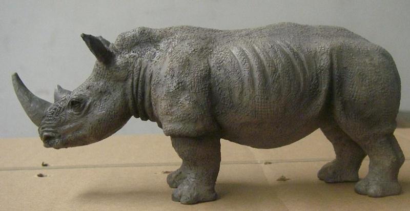 Presentatiohn: Mojo 2012 - white rhinoceros White_11