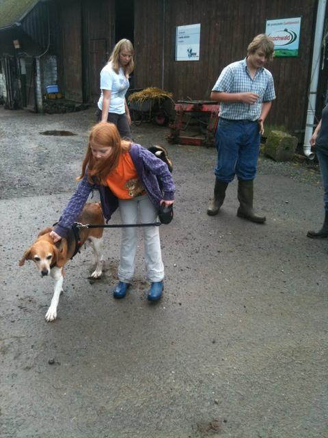 Nouvelles chiens partis le 29 juillet pour l'Allemagne Diana_10