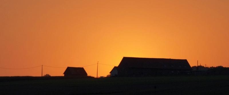 coucher de soleil vue de mon jardin Pa028510