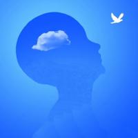 Il pensiero e la decisione: variabili umane che influenzano il funzionamento e distorsione del pensiero in società Valle310