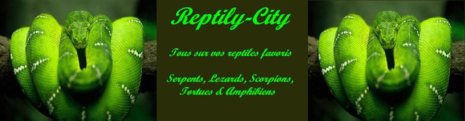reptily-city