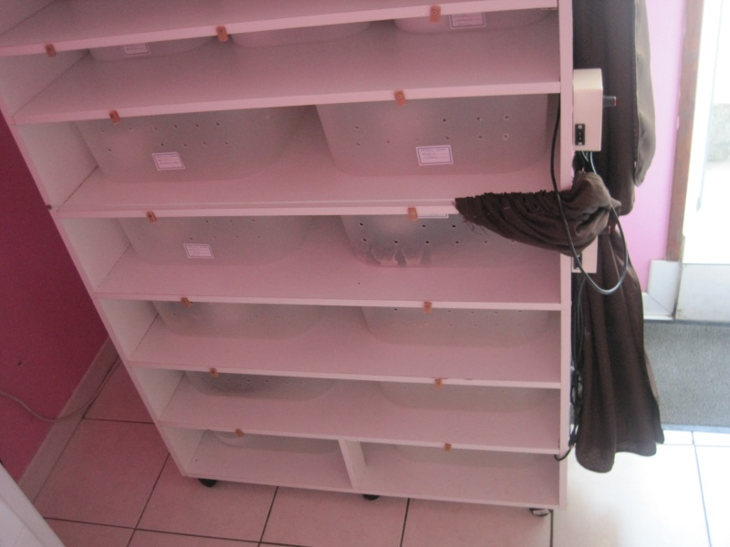 mon installation regius Img_0068