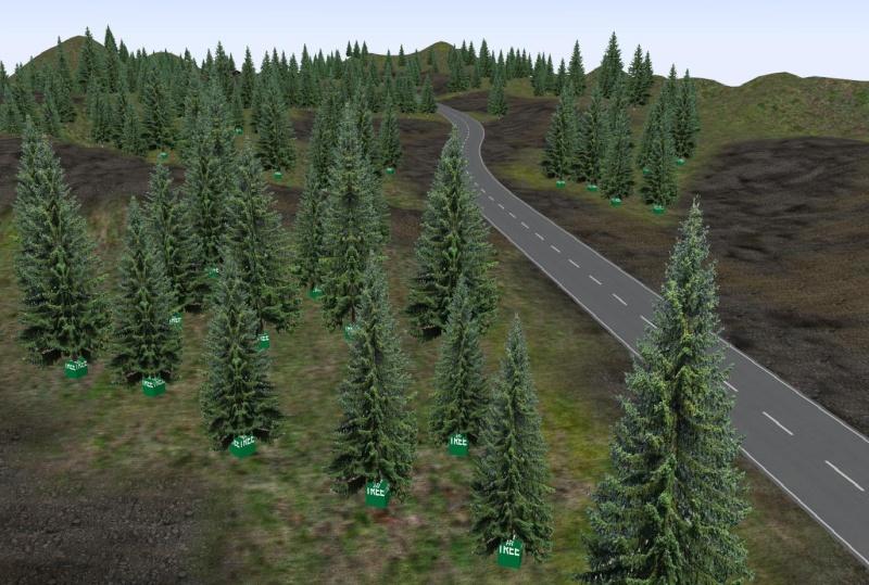 New Fantasy route 411