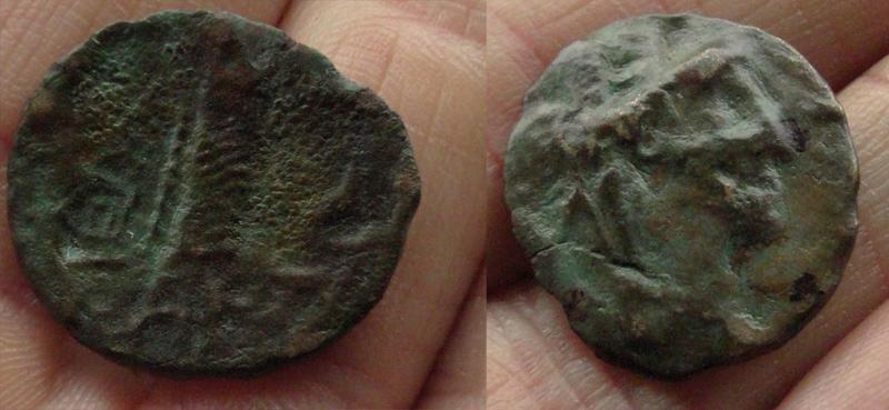 monnaie achetée en israel Dsc06812