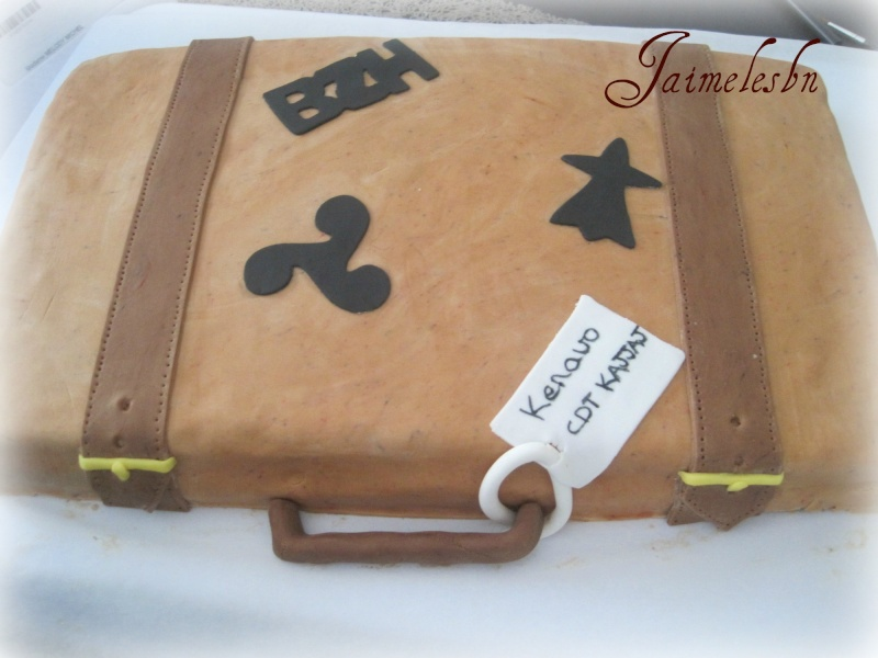 Valise - Page 4 Img_2711
