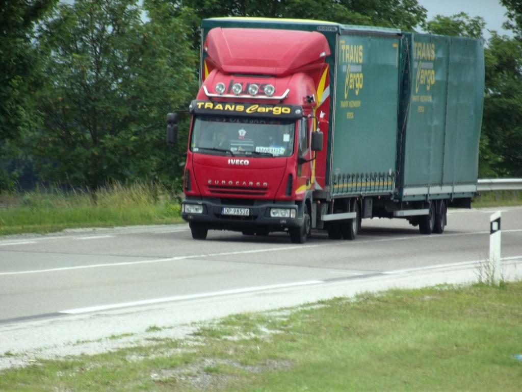 Trans Cargo (Olesnica) Cami1119