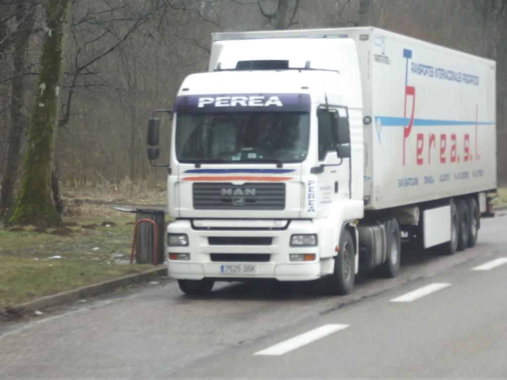Transportes Perea s.l.  (San Bartolomé-Orihuela - Alicante) Camio106