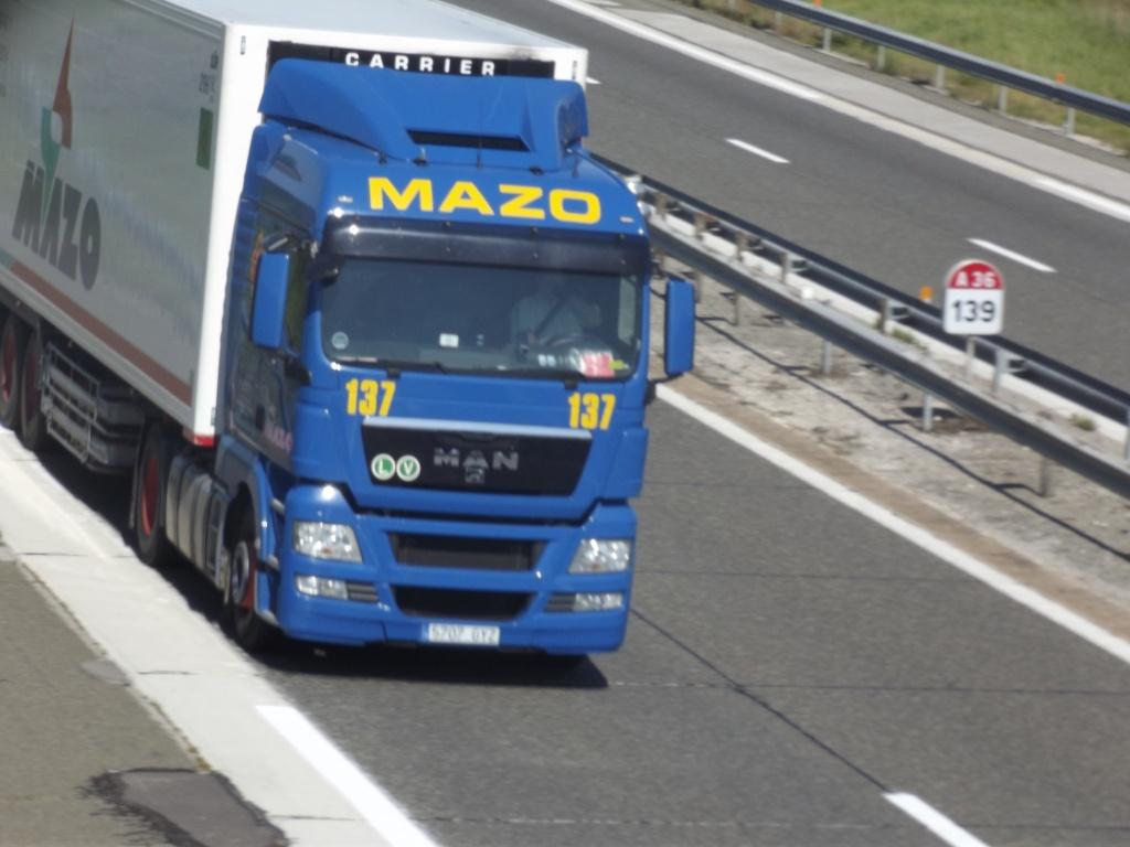 Mazo (Alzira - Valencia) Dscf0416