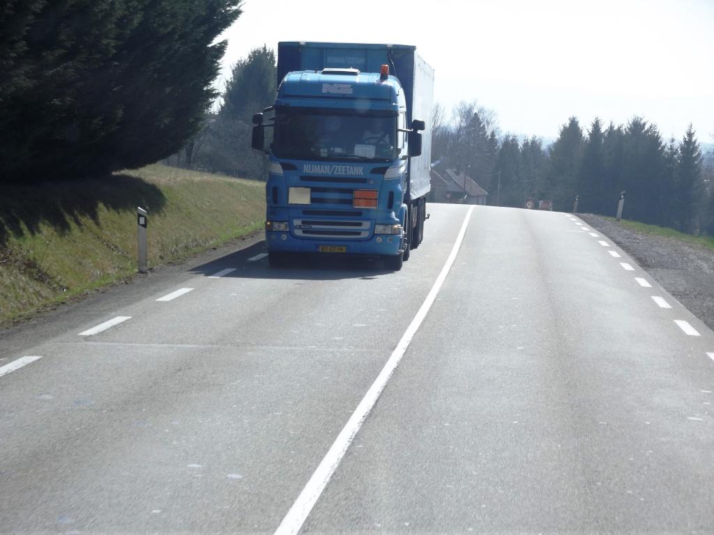 Nijman/Zeetank (Spijkenisse) Dscf6361