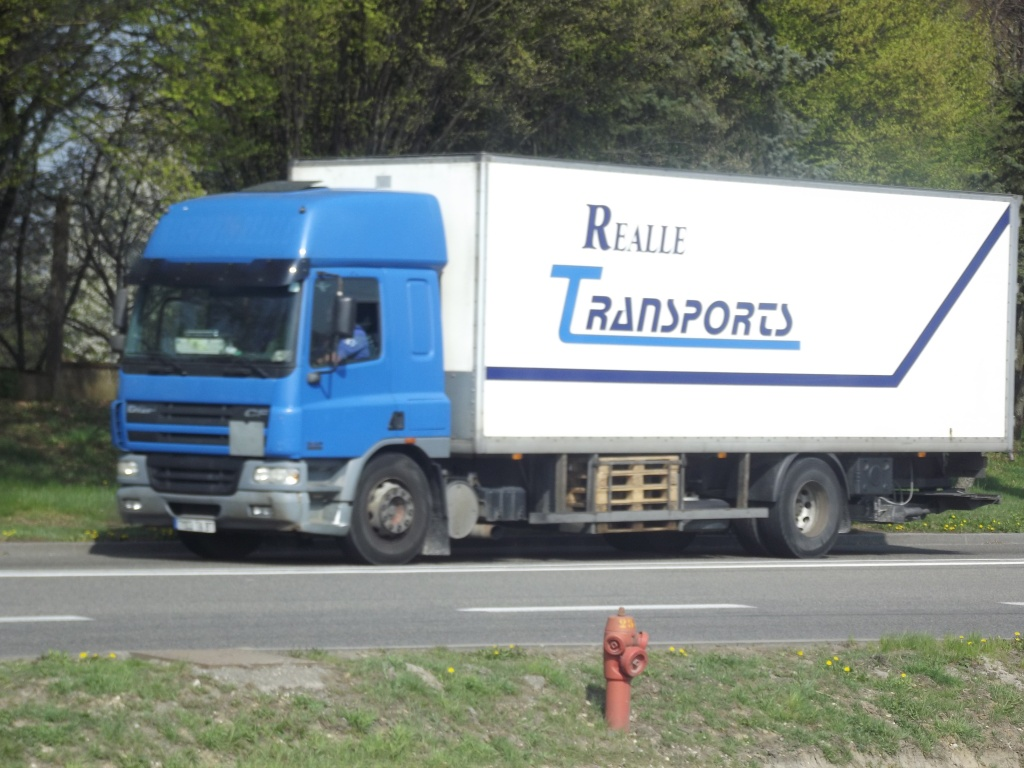 Realle Transports (Nexon, 87) Dscf7333