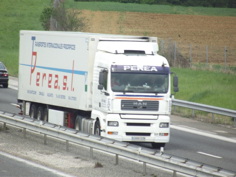 Transportes Perea s.l.  (San Bartolomé-Orihuela - Alicante) Dscf8353