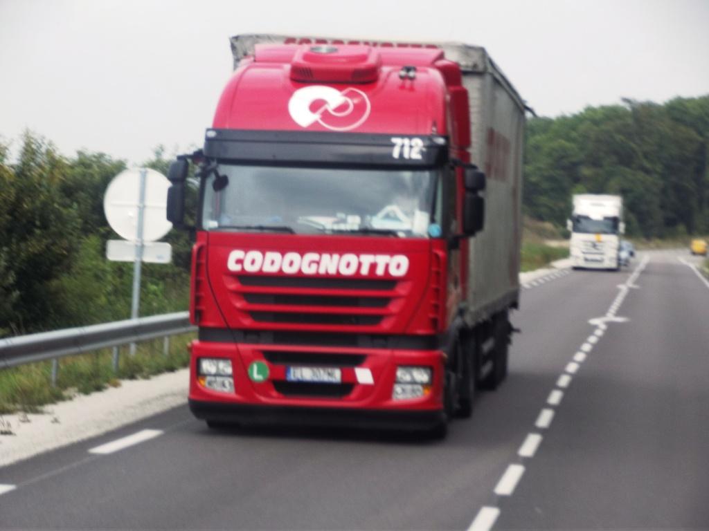 Codognotto (Salgareda)  - Page 2 Photo265