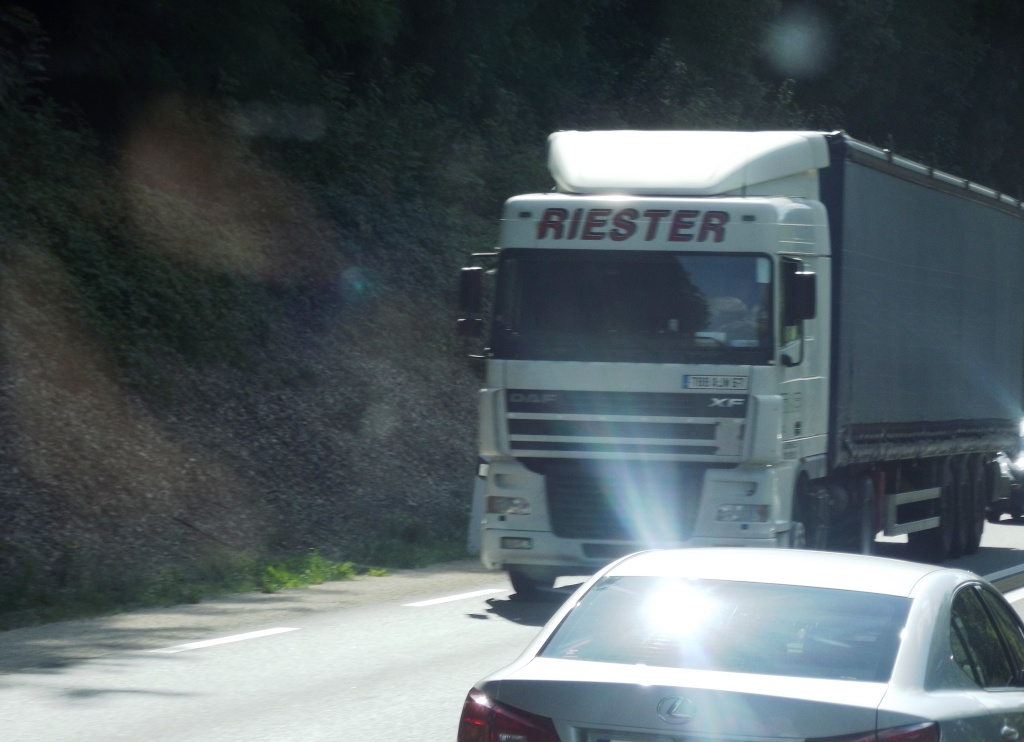 Riester (Scherwiller, 67) Photo331