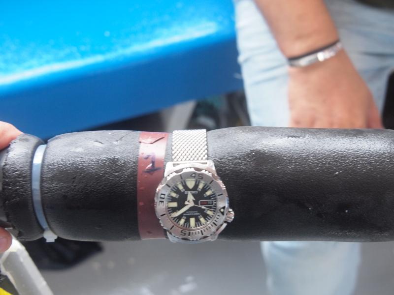Résultats du test montres et plongée du CHA 2011 P9183113