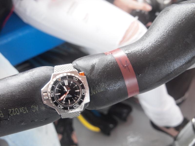 Résultats du test montres et plongée du CHA 2011 P9183115