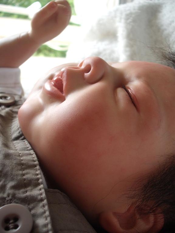 Les bébés de christine - Page 2 Dscf4113