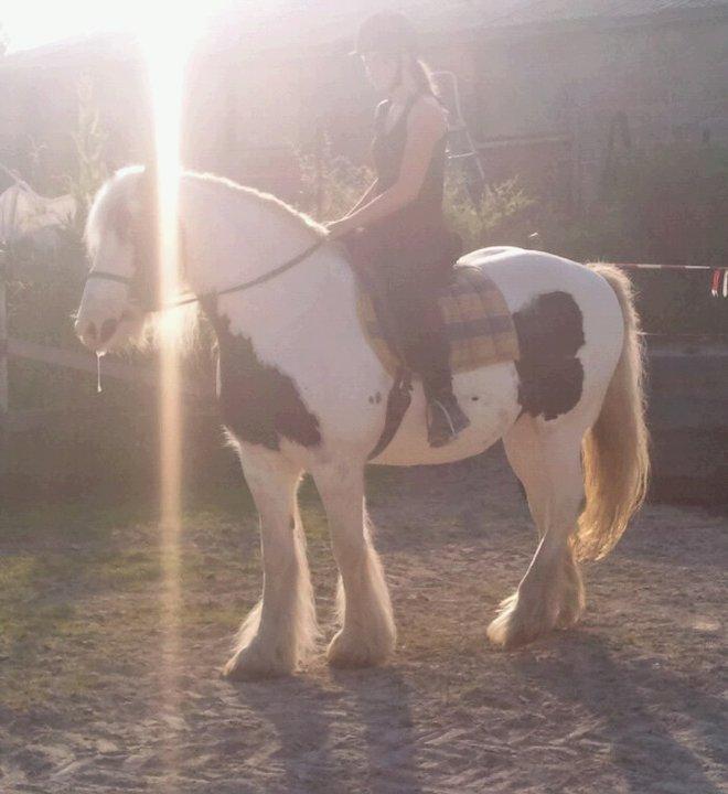 Thème juillet 2012 : Quand cheval rime avec poésie.... 58058_10