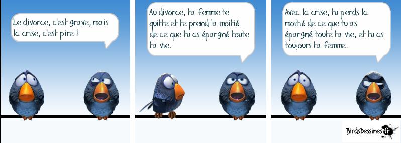 Les Birds Dessinés 13343312