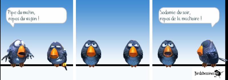 Les Birds Dessinés 13349412