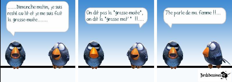 Les Birds Dessinés 13350711