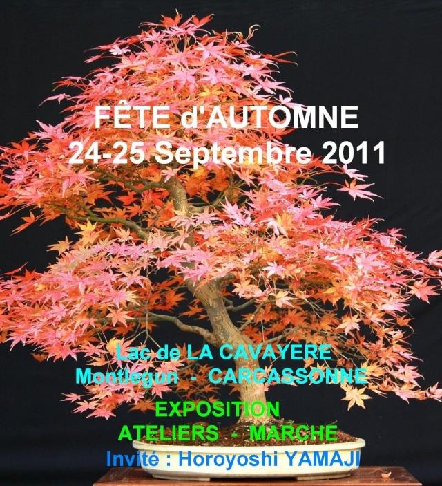 carcassonne 24 et 25 septembre 2011 11092410