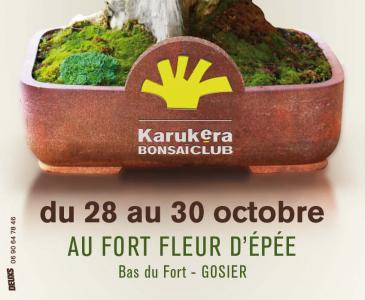 guadeloupe (Le Gosier) 28-30 octobre 11102810