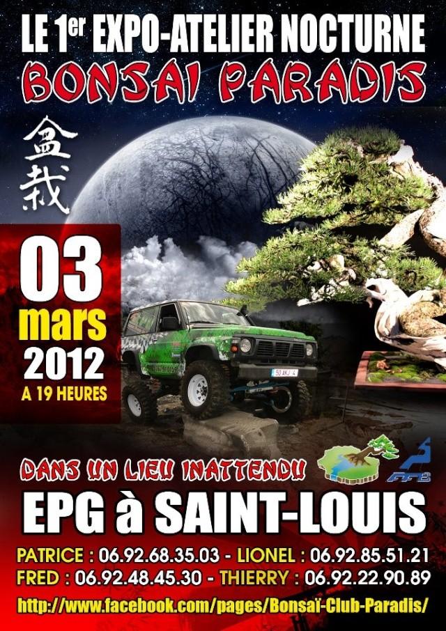 saint louis (REUNION) le 3 mars 2012 12030312